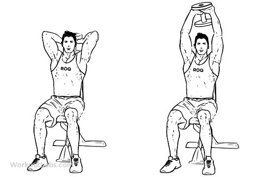 Seated Tricep Press / Overhead Extension