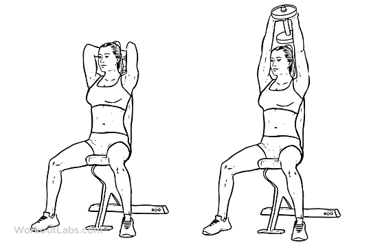 Seated Tricep Press   Overhead ExtensionSeated Tricep Extension