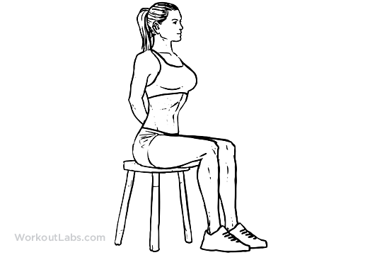 Seated Vacuum   WorkoutLabs