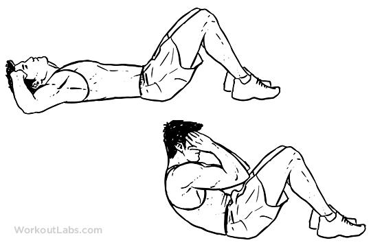 Sit-ups | WorkoutLabs