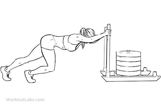 Sled Push | WorkoutLabs