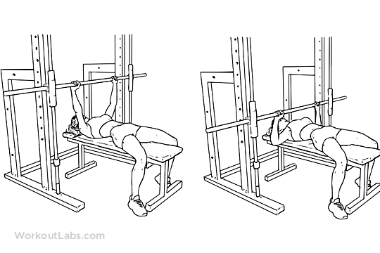 chest press exercise machine