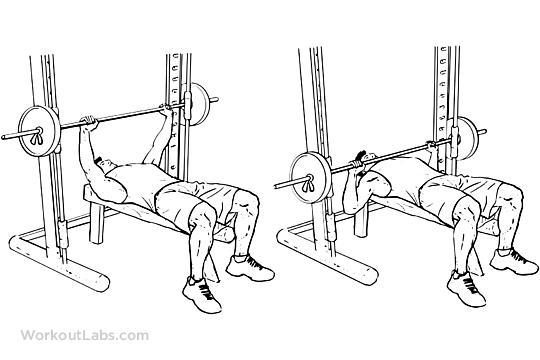 smith bench press machine