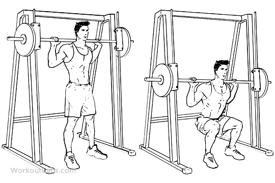 smith machine for squats