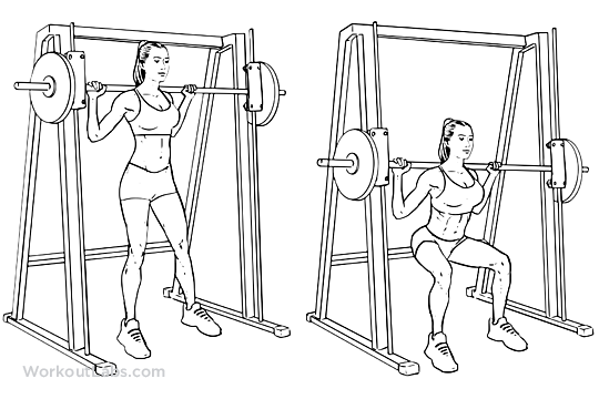 Smith Machine Squats | WorkoutLabs
