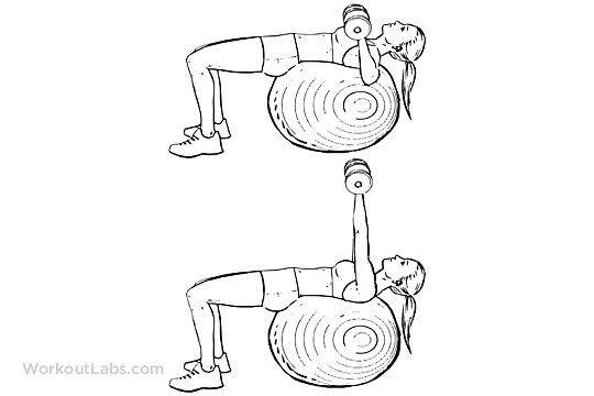 Alternating Arm Swings On Swiss Exercise Ball With Theragear Power Weight 1