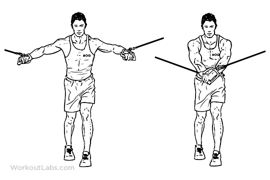 Standing Cable Crossover Fly Illustrated Exercise