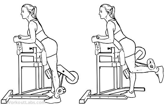 Standing Leg / Hamstring Curl | Illustrated Exercise guide ...