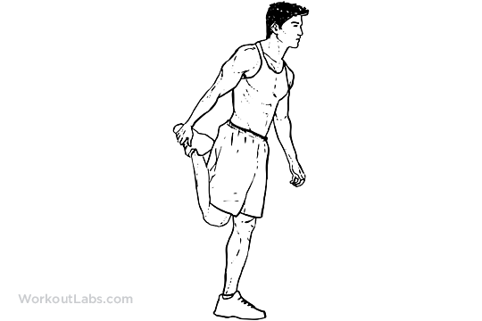 Standing Quadricep Stretch | WorkoutLabs