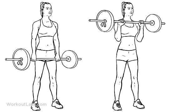 Standing Reverse Barbell Curls | WorkoutLabs