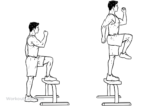 Step Up with Knee Raise | Illustrated Exercise guide ...