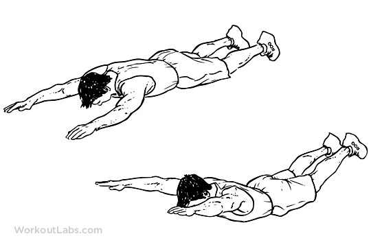 Superman extended arms amp legs lift illustrated exercise guide