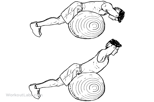 Stability / Swiss / Exercise Ball Back Extensions ...