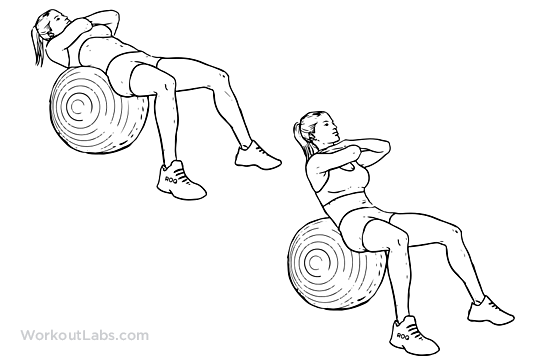 Swiss Ball Crunch | Illustrated Exercise guide - WorkoutLabs