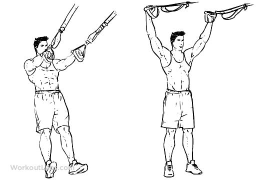 trx suspension training guide pdf