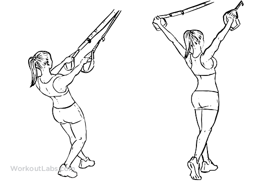 TRX Suspension Straps Deltoid Y Fly | Illustrated Exercise ...