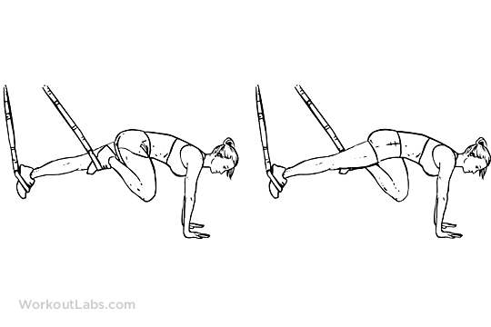 TRX Suspension Strap Mountain Climbers | WorkoutLabs