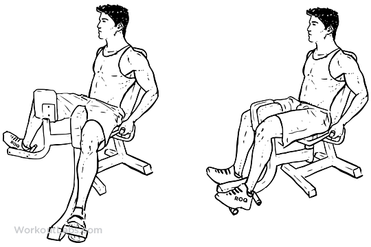 Thigh Adductor Exercises Machine
