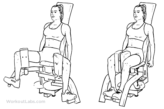 thigh exerciser how to use