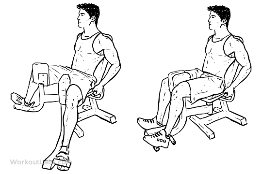 hip adductor exercise machine