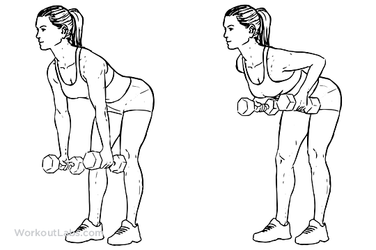 Two Armed Bent Over Row Illustrated Exercise Guide