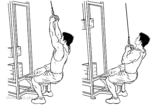 v  triangle bar lat pulldowns    pull downs    pullovers