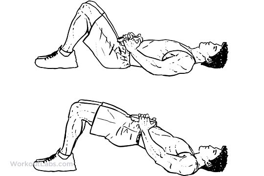 Weighted Glute Bridge | Illustrated Exercise guide ...