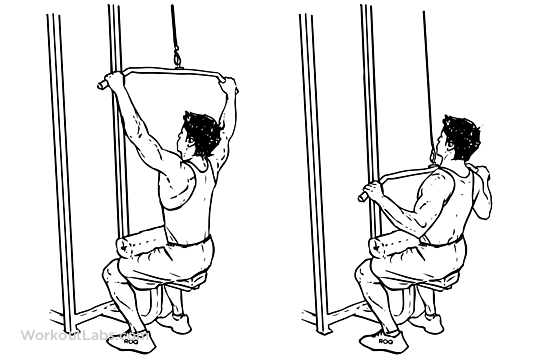 Wide-Grip Lat Pulldown pngWide Grip Pull Downs