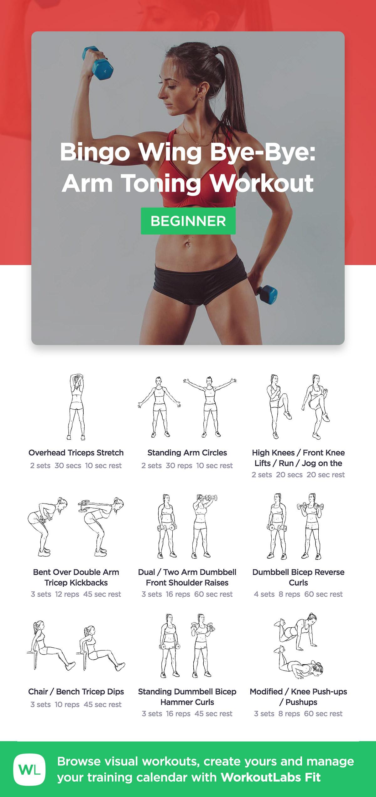 Bingo Wing Bye Bye Arm Toning Workout · WorkoutLabs Fit