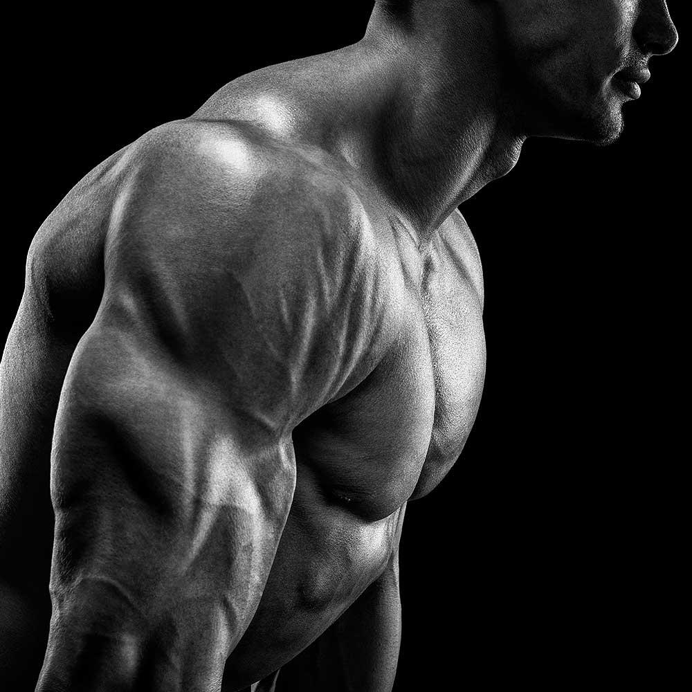 Bodyweight Buff: No-Equipment Muscle Builder