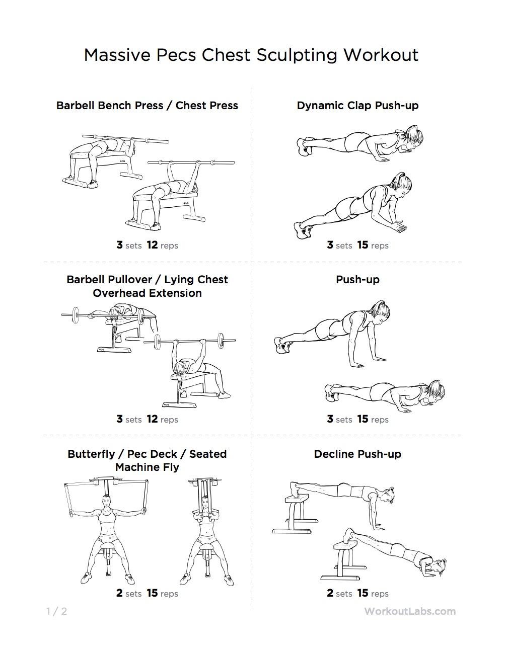Biceps Workout Plan Pdf Most Por Programs Bodybuilding Chest