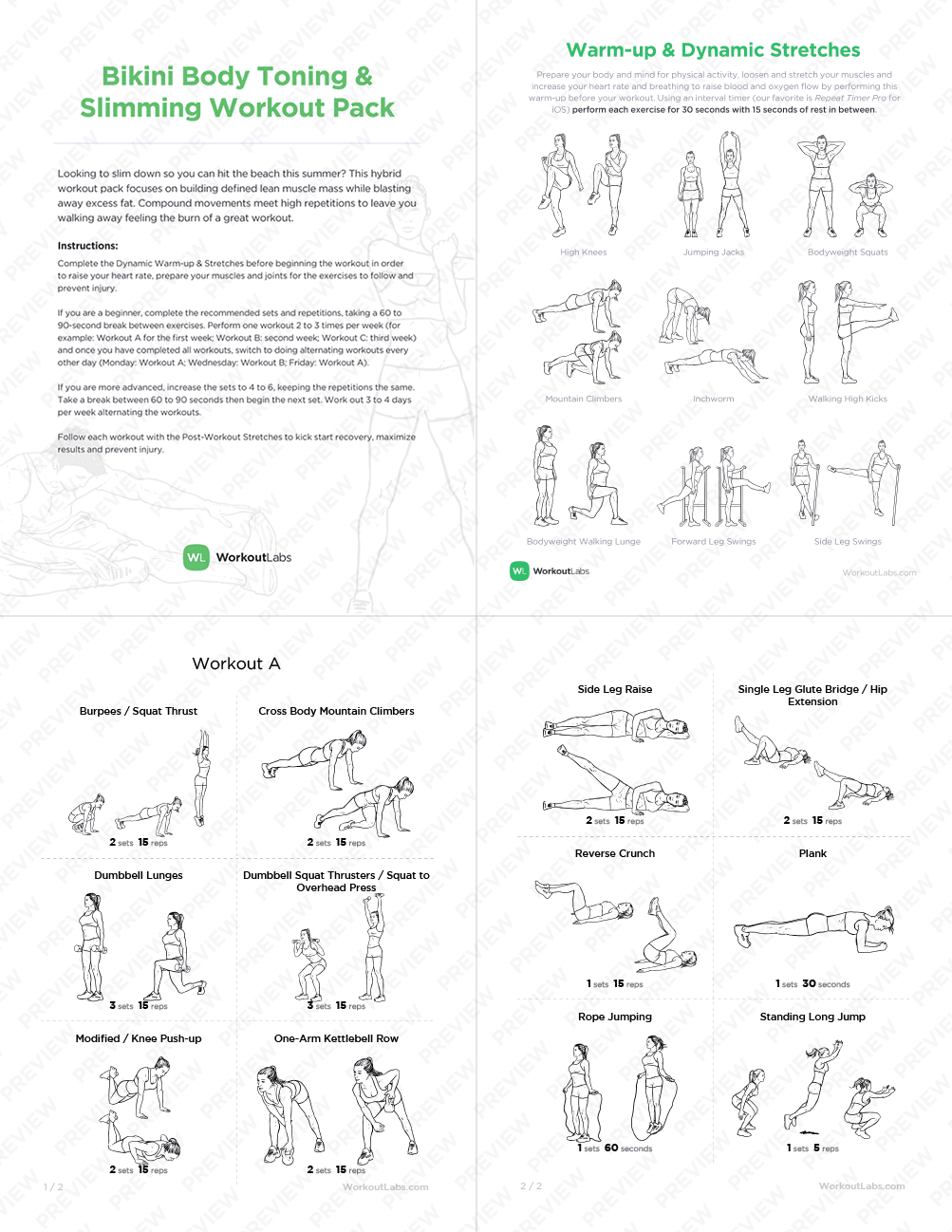Love Handles In Top Melter Printable Gym Workout For Women