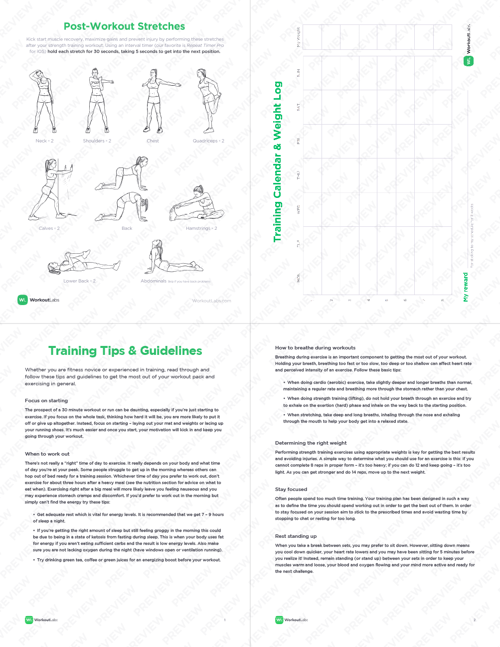 Dumbbell Exercises Chart