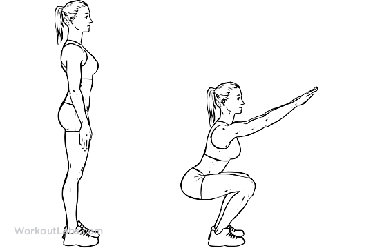 Air Squats | WorkoutLabs