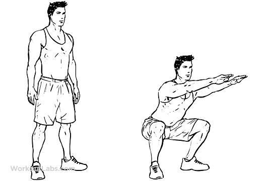 Air Squats | WorkoutLabs