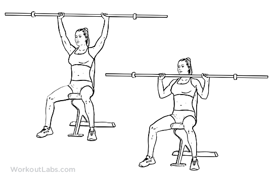 Barbell Shoulder Press / Overhead Press