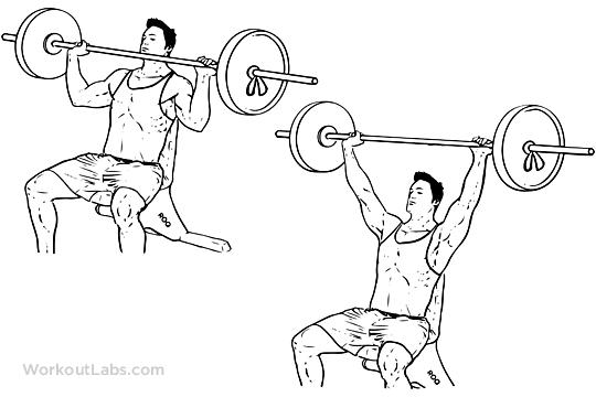 Barbell Shoulder Press / Overhead Press | WorkoutLabs