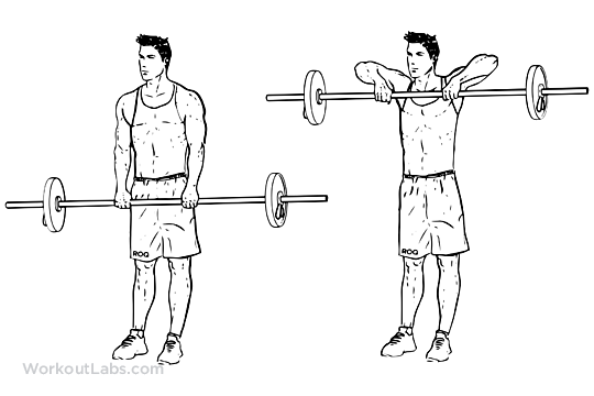 Upright Barbell Rows Workoutlabs