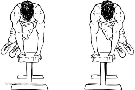 Bench Hops / Box Jumps   WorkoutLabs