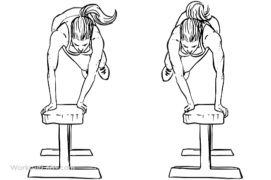 Bench Hops / Box Jumps