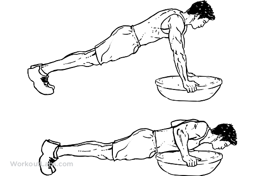 Bosu Ball Push Up Illustrated Exercise Guide Workoutlabs