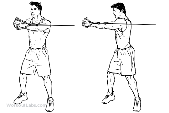 Cable Core Rotation | WorkoutLabs