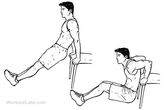 Image result for bench dip illustration