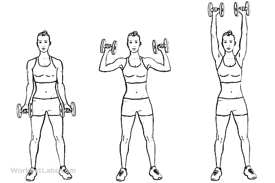 Dumbbell Biceps Curl To Shoulder Press on suspension