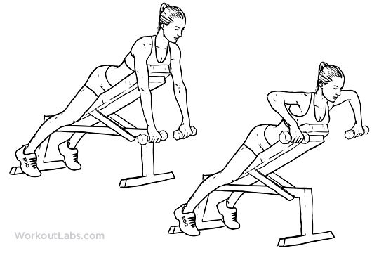 Incline Dumbbell Row Dumbbell Incline Bench...