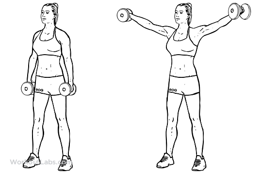 dumbbell lateral raise    power partials
