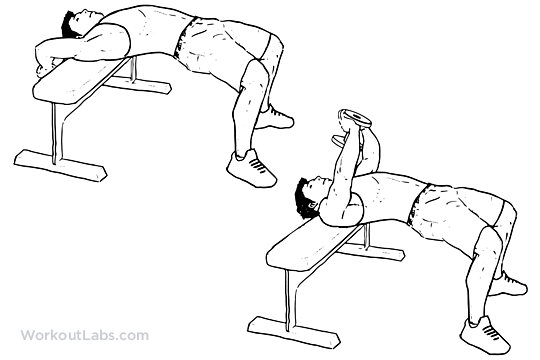 Dumbbell Pullover Illustrated Exercise Guide Workoutlabs