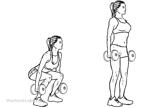 dumbbell squat illustrated exercise guide workoutlabs jumping jacks diagram