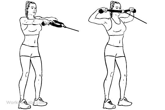Toe Taps   WorkoutLabs