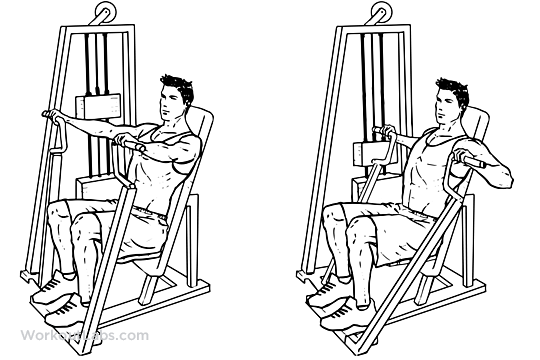 Hammer Strength Machine Chest Press Illustrated Exercise